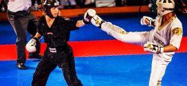 Caradh O'Donovan, A Kickboxers Blog
